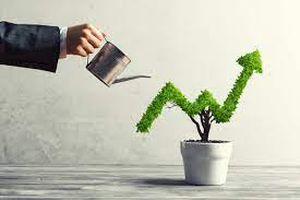 How to best grow your business