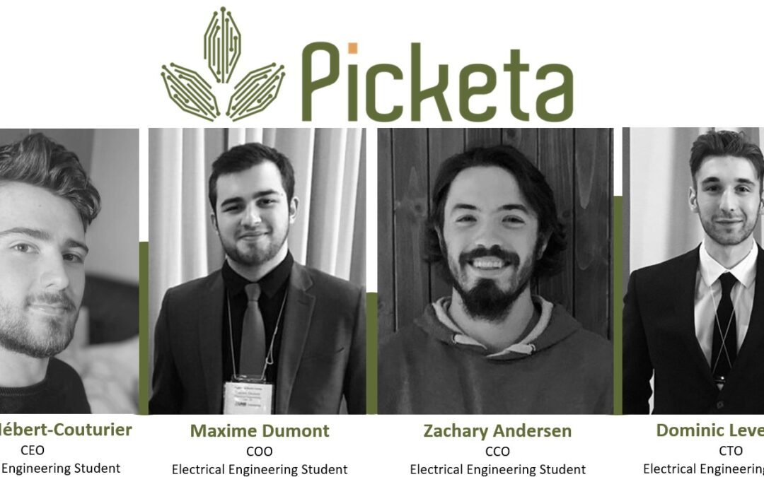 The Success of Picketa Systems